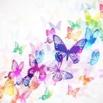 Erste Kindsbewegungen – Schmetterlinge im Bauch
