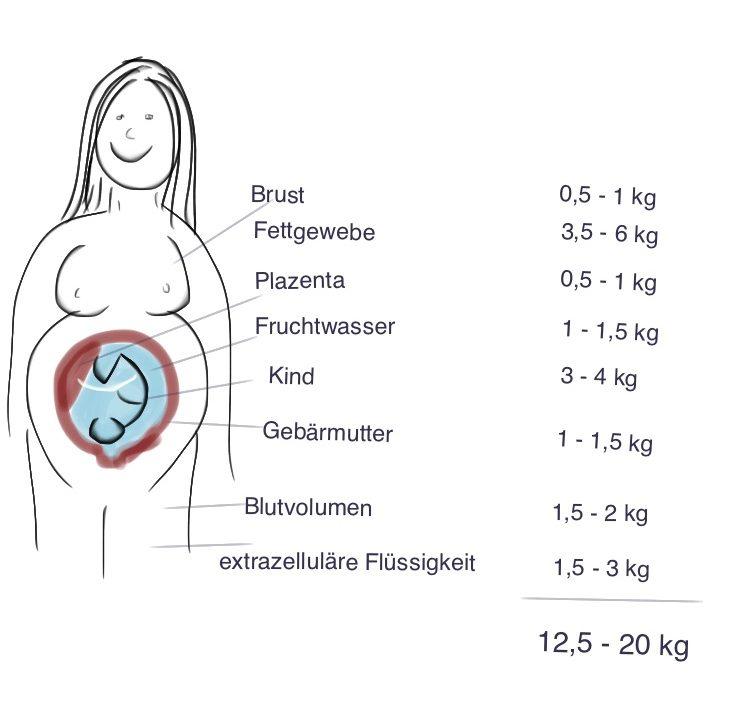 Gewichtszunahme in der Schwangerschaft